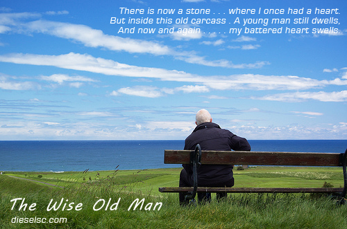 Image result for old man by the bench