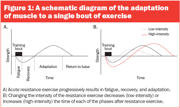 Simple Way to Understand Training Intensity